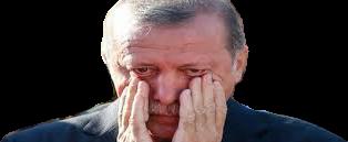 Erdogan njörvaður niður